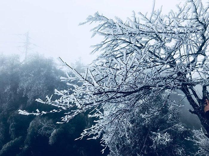 Mùa Đông là mùa lạnh nhất ở Sapa