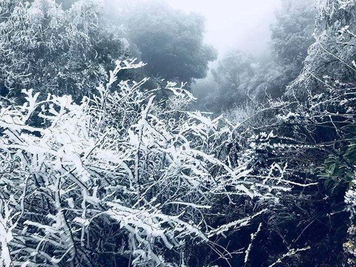 Băng tuyết ở Sapa mùa đông