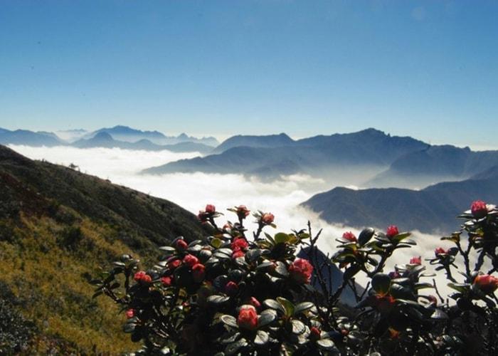 Săn mây ở Núi muối, Bạch Mộc Lương Tử, Lào Cai