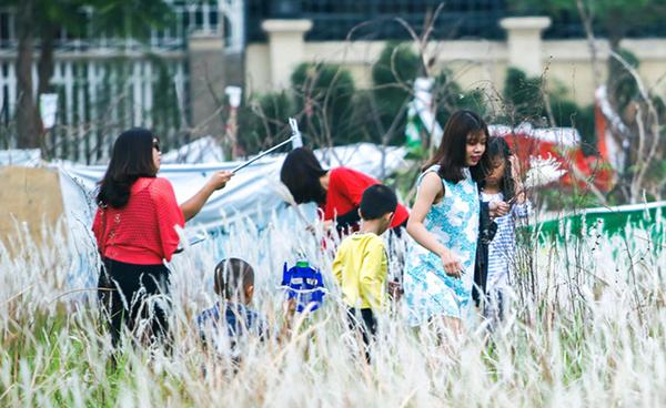 Thêm 2 địa điểm chụp ảnh đẹp với cỏ lau cho bạn trẻ Hà thành