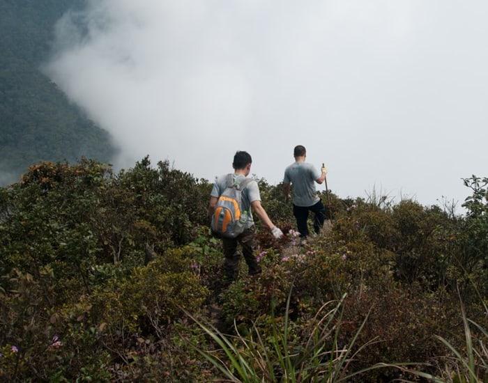 Kinh nghiệm trekking Tam Đảo