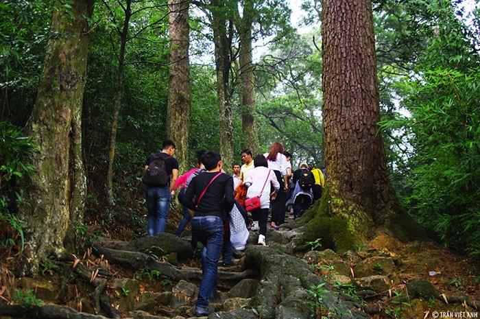 Đoạn đường Tùng lên núi Yên Tử