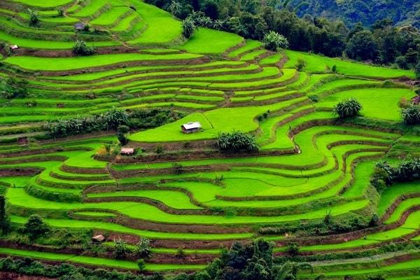 Thung lũng Mai Châu - Hòa Bình