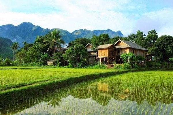 Bản Pom Coong là 1 địa điểm không thể bỏ qua khi đi phượt Mai Châu