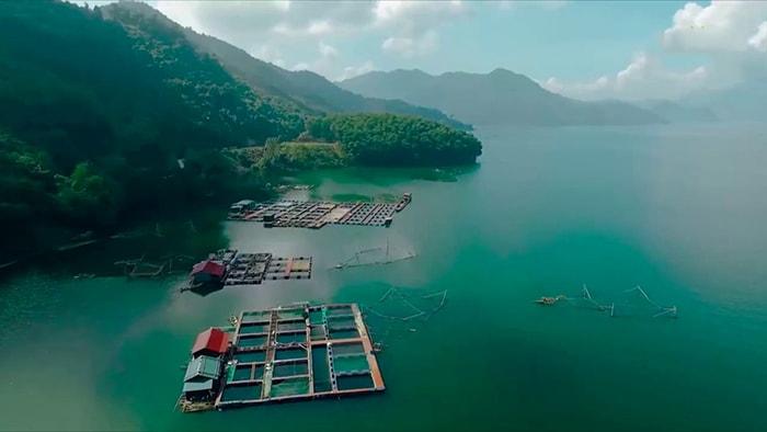 Bè nuôi cá lồng trên hồ Hòa Bình