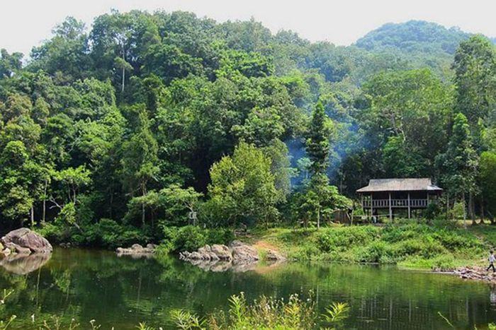 Hồ Tự Nhiên Bằng Tạ là điểm vui chơi, du lịch gần Hà Nội cho ngày nghỉ