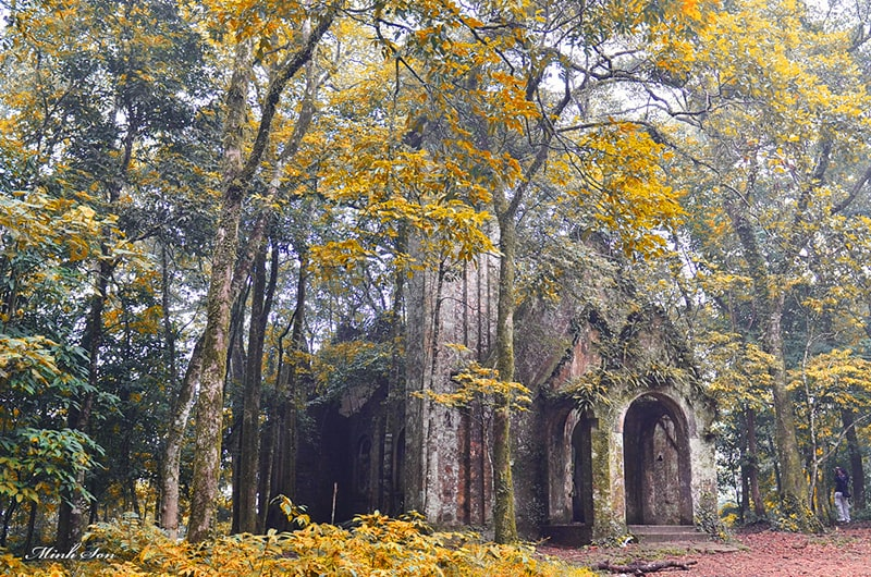 Vườn Quốc Gia Ba Vì là địa điểm dã ngoại lý tưởng ở Hà Nội