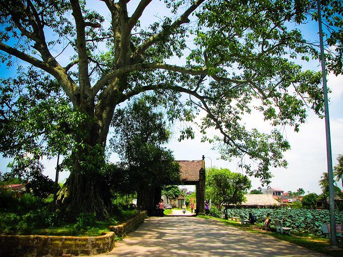Làng Cổ Đường Lâm  là địa điểm du lịch 1 ngày gần Hà Nội