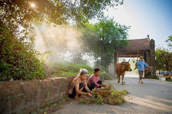 Vẻ đẹp yên bình của Làng cổ Đường Lâm - Hà Nội