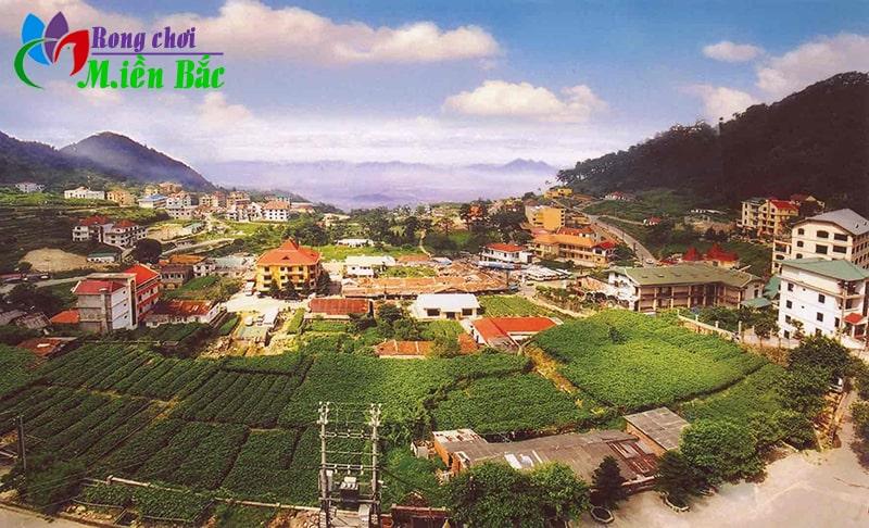 Tam Đảo là địa điểm du lịch gần Hà Nôi được các bạn trẻ yêu thích