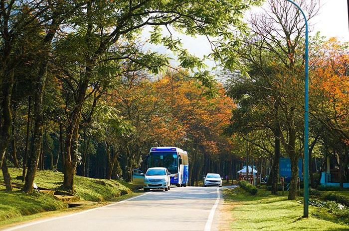 Con đường vào vườn quốc gia Ba Vì