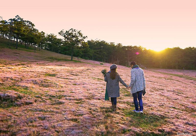 Những chú ý khi du lịch đồi cỏ hồng Đà Lạt