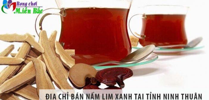 Địa chỉ bán nấm lim xanh uy tín số 1 tại tỉnh Ninh Thuận